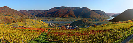 Weinberge Spitz - click to enlarge (559kB)